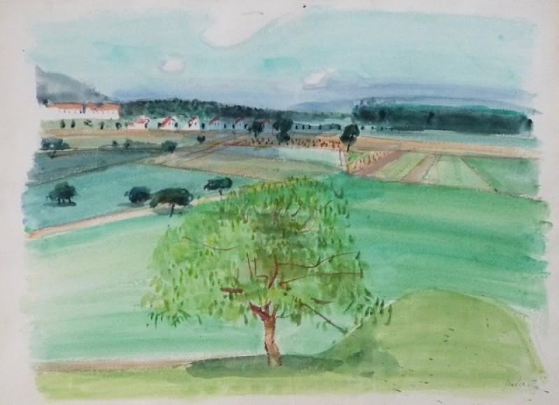 Zürcher Landschaft, um 1960