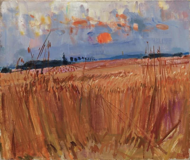 Champs de blé en soir, 196?