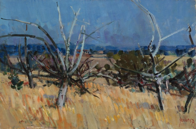 Olivenbäume, 1957